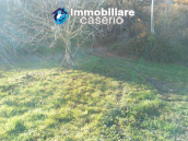 Brick farmhouse surrounded by nature with 11.000 sq m of land for sale in Italy 12