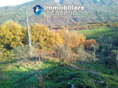 Brick farmhouse surrounded by nature with 11.000 sq m of land for sale in Italy 13