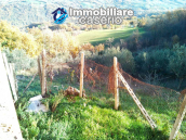Brick farmhouse surrounded by nature with 11.000 sq m of land for sale in Italy 14