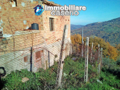 Brick farmhouse surrounded by nature with 11.000 sq m of land for sale in Italy 5