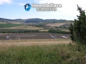 Country house with land for photovoltaic system in Montenero 3
