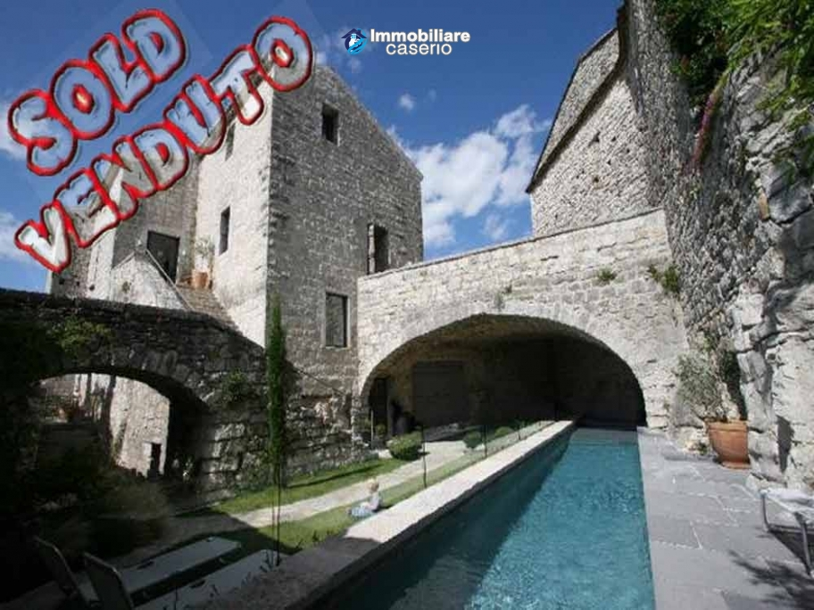 Magnificent feudal French Castle  from the XIth century for sale in Avignon