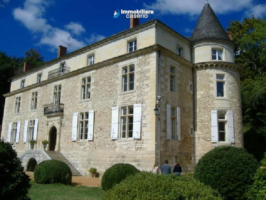 Elegant Castle between Bordeaux e Limoges