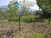 Detached house for sale with land in Roccaspinalveti, Abruzzo 9