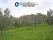 Land of 5000sqm for sale in Petacciato, Molise region 11