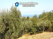 Land of 5000sqm for sale in Petacciato, Molise region 2