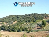 Land of 5000sqm for sale in Petacciato, Molise region 3
