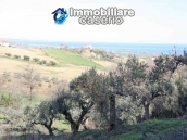 Land of 5000sqm for sale in Petacciato, Molise region 5
