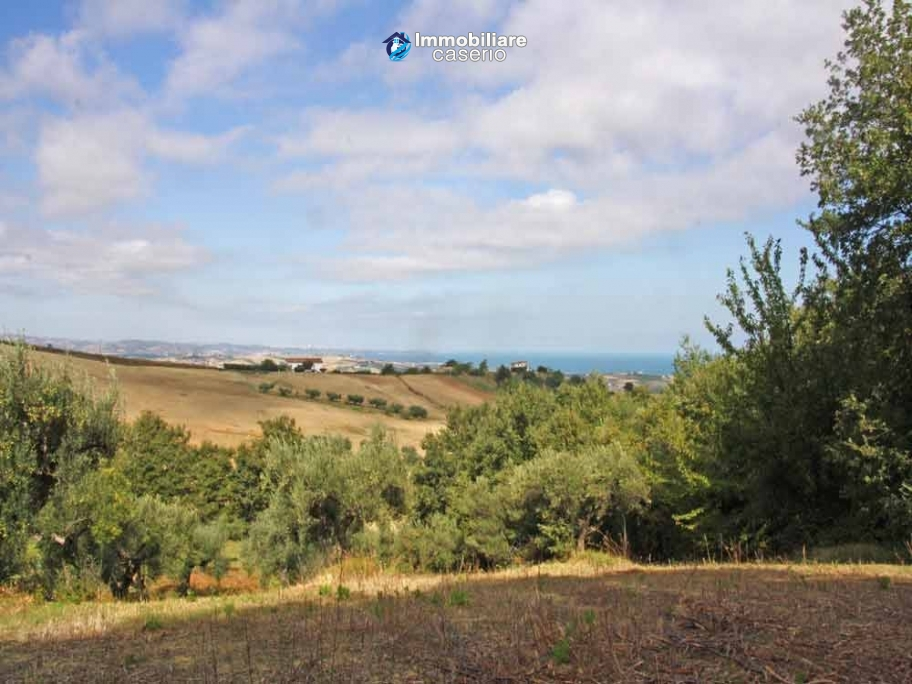 Land of 5000sqm for sale in Petacciato, Molise region