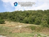 Country house with 30 hectares of land in Tufillo 11