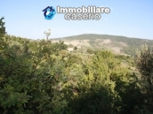 Land of 4000sqm with ruin to rebuild entirely in Palmoli 1