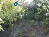 Land of 4000sqm with ruin to rebuild entirely in Palmoli 3
