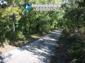 Land of 4000sqm with ruin to rebuild entirely in Palmoli 6