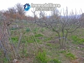 Portion of country house with land  in Schiavi d'Abruzzo 26