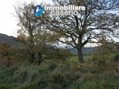 Stone house with an acre of land for sale in Palmoli, Abruzzo 10