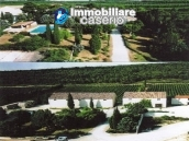 Property situated in France with wineyard 1