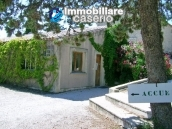 Property situated in France with wineyard 6