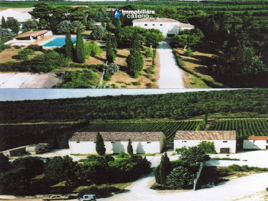 Property situated in France with wineyard