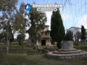 Newly built country house with land in Montenero 10