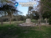 Newly built country house with land in Montenero 11