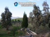 Newly built country house with land in Montenero 12