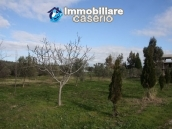 Newly built country house with land in Montenero 15