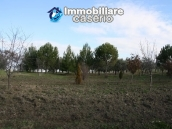 Newly built country house with land in Montenero 16