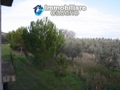 Newly built country house with land in Montenero 18