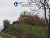 Realise your country house with two hectares of olive groves 1