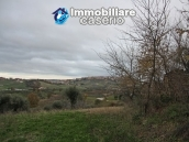 Realise your country house with two hectares of olive groves 12