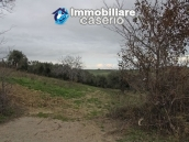 Realise your country house with two hectares of olive groves 13
