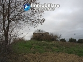Realise your country house with two hectares of olive groves 3