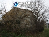 Realise your country house with two hectares of olive groves 4
