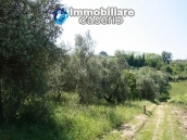 Agricultural land of 5000sqm with water spring in Vasto 1