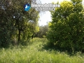Agricultural land of 5000sqm with water spring in Vasto 10