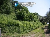 Agricultural land of 5000sqm with water spring in Vasto 11