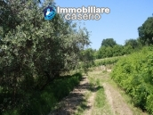 Agricultural land of 5000sqm with water spring in Vasto 2