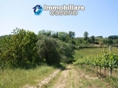 Agricultural land of 5000sqm with water spring in Vasto 3