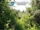 Agricultural land of 5000sqm with water spring in Vasto 6
