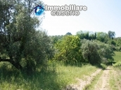 Agricultural land of 5000sqm with water spring in Vasto 7