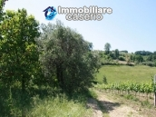 Agricultural land of 5000sqm with water spring in Vasto 8