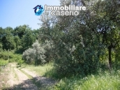 Agricultural land of 5000sqm with water spring in Vasto 9
