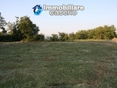 Property with three countryhouses on 12000sqm of land 10