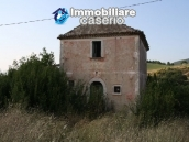 Countryhouse with 3 hectares of land in Salcito, Molise! 3