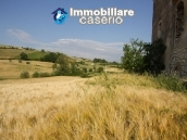 Countryhouse with 3 hectares of land in Salcito, Molise! 7
