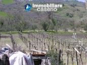 Habitable house with land, garden and terrace for sale in Tornareccio, Abruzzo 18