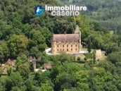 Spectacular castle for sale in Dordogne 1