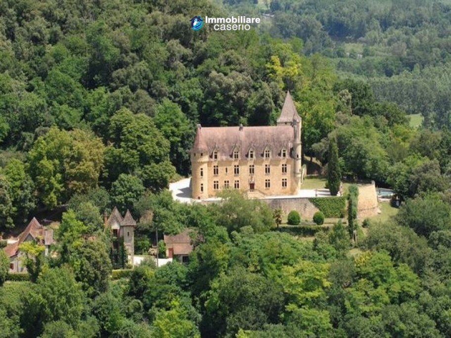 Spectacular castle for sale in Dordogne
